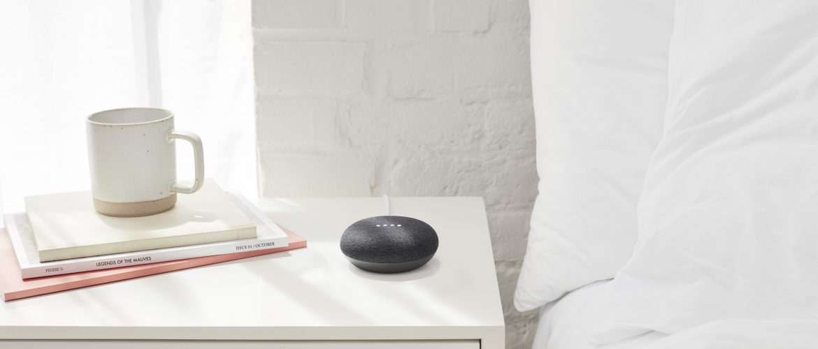 Google Home Mini Cadeaus